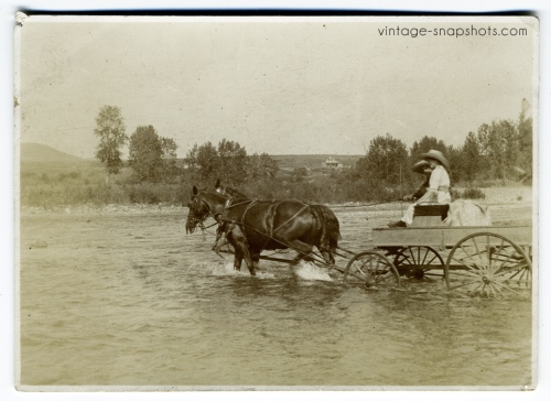 Horses pull a wagon across a river in vintage photograph