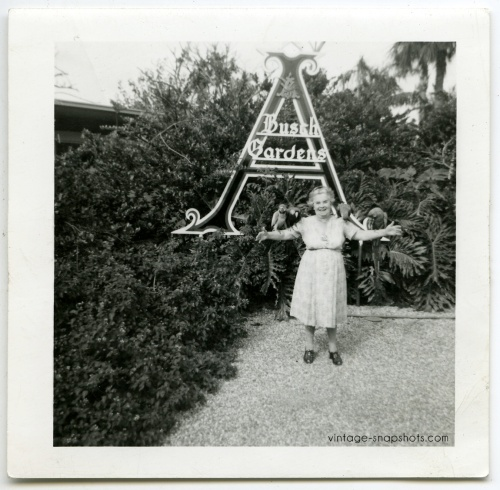 Vintage snapshot of woman with birds on her arms at Busch Gardens Park