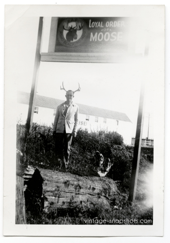"Funny vintage snapshot photo of man with moose horns by ""Order of Moose"" sign"